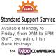 Standard Support Service
