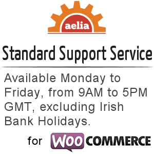 Standard Support Service